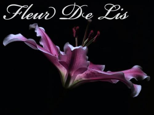 Cалон красоты «Fleur de lis